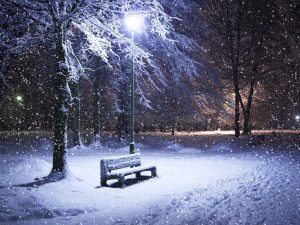 Image by siddu - credit to https://commons.wikimedia.org/wiki/File:Wintersnow.jpg
