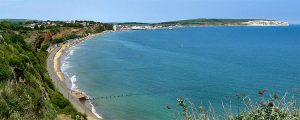 Image cropped courtesy of https://commons.wikimedia.org/wiki/File:Flickr_-_ronsaunders47_-_COASTAL_FOOTPATH_2._SANDOWN-SHANKLIN._ISLE_OF_WIGHT..jpg